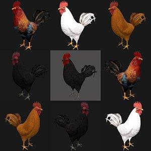 3D hen bird rigged model