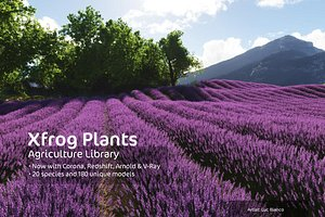 3d agricultural plants xfrogplants dvds model