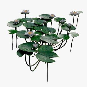 plants nature 3D model