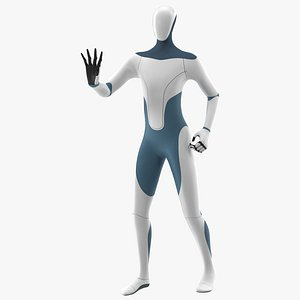3D Robotic Humanoid Rigged model