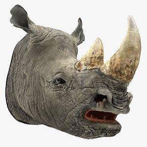rhino head 3D