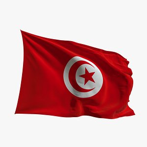 3D Realistic Animated Flag - Microtexture Rigged - Put your own texture - Def  Tunisia