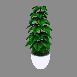 3D model Indoor Plant Pot