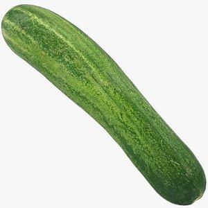 food cucumber fruit 3D