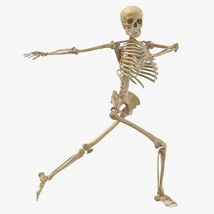 Real Human Female Skeleton Pose 85(1) model