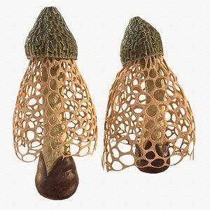mushroom fungus nature 3D model