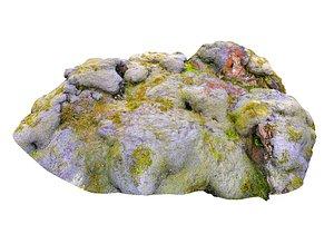 3D moss rock model
