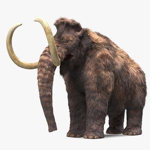 Mammoth Adult Fur 3D model
