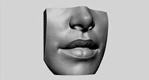 head face anatomy 3D model