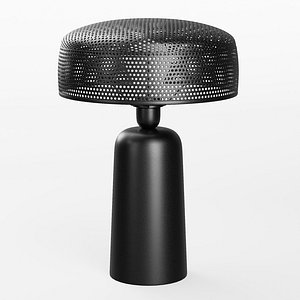 3D Emery Metal Table Lamp