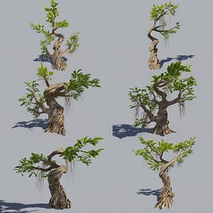 3D 6 Trees collection