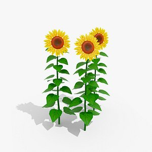 3D Stylized Low-Poly Sunflower
