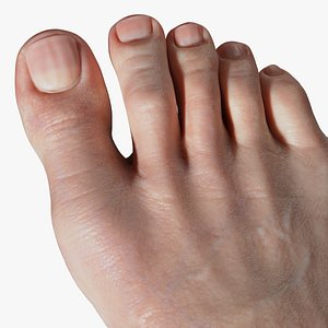 Foot Realistic Arnold model