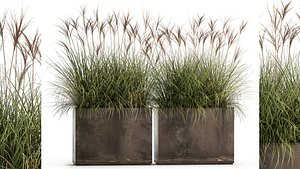 Reeds in a rusty flower pot for the interior 933 3D