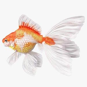3D White Goldfish Aquarium Fish Rigged for Modo