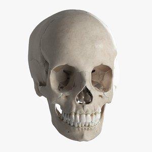 science anatomy bone 3D