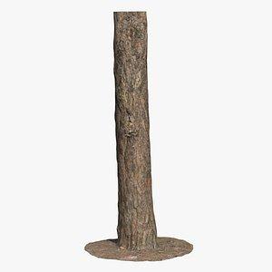 3D Pine Tree Trunk Scan 02 model
