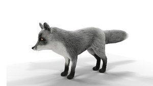 FurGray Fox 3D model