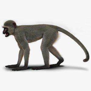 monkey ververt fur 3D