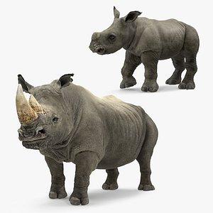 rhinos fur 3D
