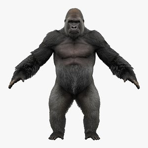 gorilla fur objects 3D model