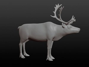 Reindeer base mesh 3D