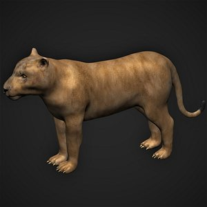 fully rigged female lion 3D