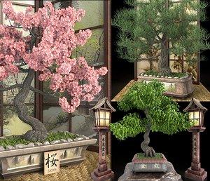 Bonsai set - sakura, coniferous, deciduous 3D model