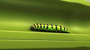Stem Borer and Caterpillar 3D model