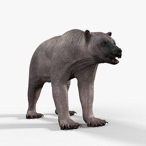 3D bear Skin 2