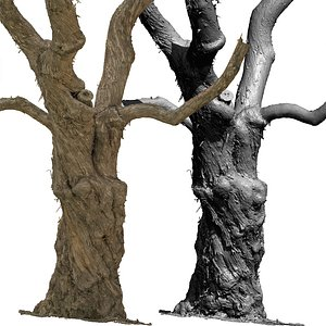 Old Lilac Tree 2 3D scan HQ mesh 3D