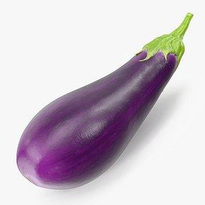 Solanum Melongena Eggplant 3D