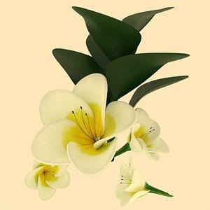 flower white 3D