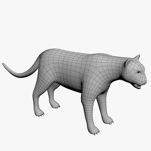 3D Cougar model
