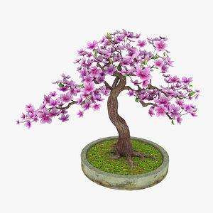 magnoliaTreePot 3D model