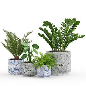 houseplant 3D model