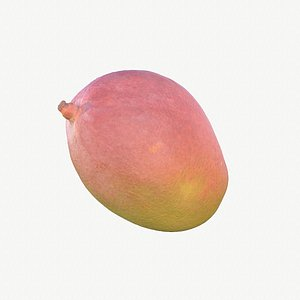 01 hy mango model