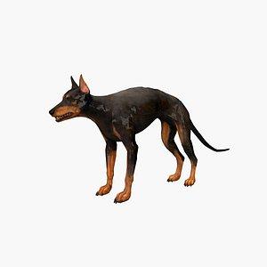 doberman dog beast 3D