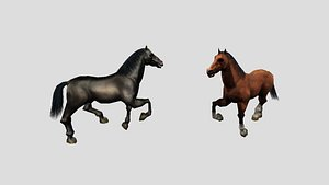 3D horse animations model