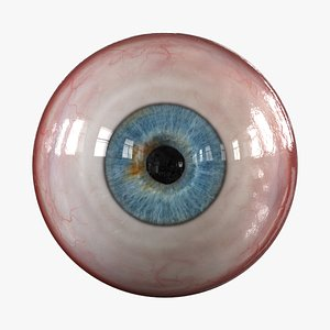 human eye realistic eyeball iris 3D model