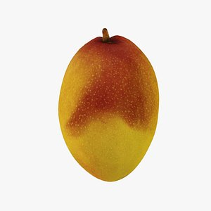 Mango - Real-Time 3D Scanned 3D model