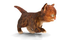 Fur Cute Red Cat Kitten Animated 3D model