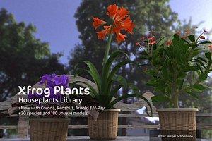 houseplants dvd plant 3d model
