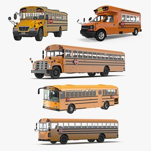School Buses Collection 3 model