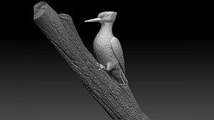 3D woodpecker model