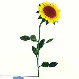sunflower plant 3D