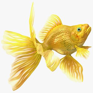 Goldfish Swim 3D model