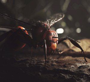hornet insect wasp 3D model