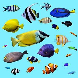 3D model 23 Aquarium fish