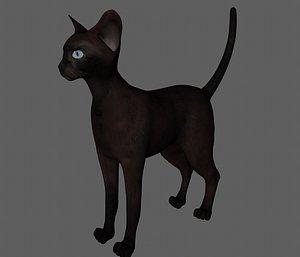 Cat Cat Cat Farm cat Black cat Blue cat Siamese cat Beautiful short orange cat Orange cat Leopard ca 3D model